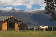 view of the mountains, a cabin, and a Welsh pony